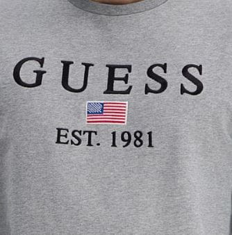 Męska bluza Guess szara GUMM93Q23K6ZS0