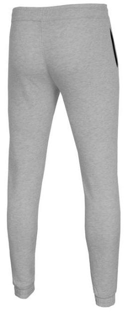 Męskie spodnie dresowe 4F chłodny jasny szary melanż