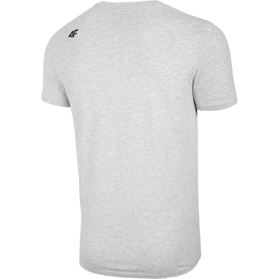 Męski T-Shirt 4F NOSH4-TSM004 27M Szary