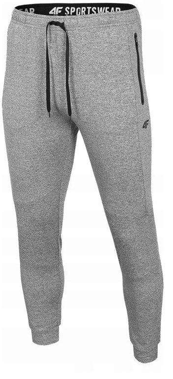Męskie spodnie dresowe 4F szare