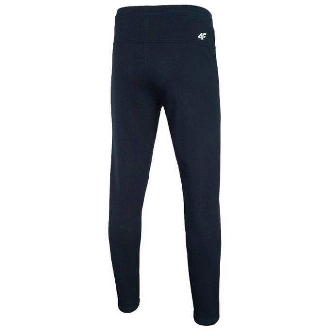 Męskie spodnie dresowe 4F H4L20-SPMD010 30S